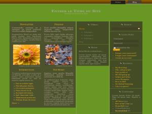 Pack de 100 thèmes WordPress responsives (pack N°4)