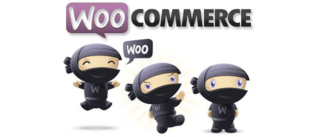 DDLX propose désormais des E commerces WooCommerce