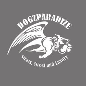 Collier pour chien dogz Paradize